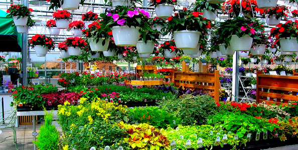 Tired Of Missing Customers And Deliveries At Your Greenhouse Or Garden Center? - Absolute ...